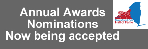 Annual Award Nomination Form